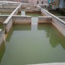 肇庆市汇丰陶瓷有限公司—污水运营